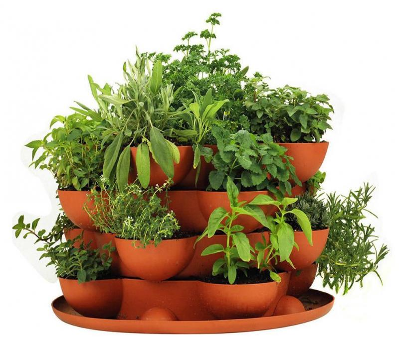 Counter top containers - terracotta planter