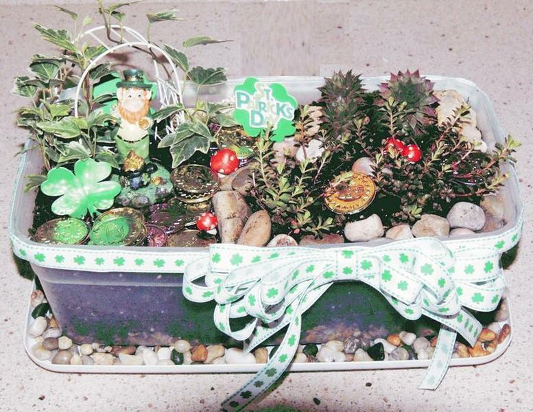 Leprechaun Garden in a plastic shoebox