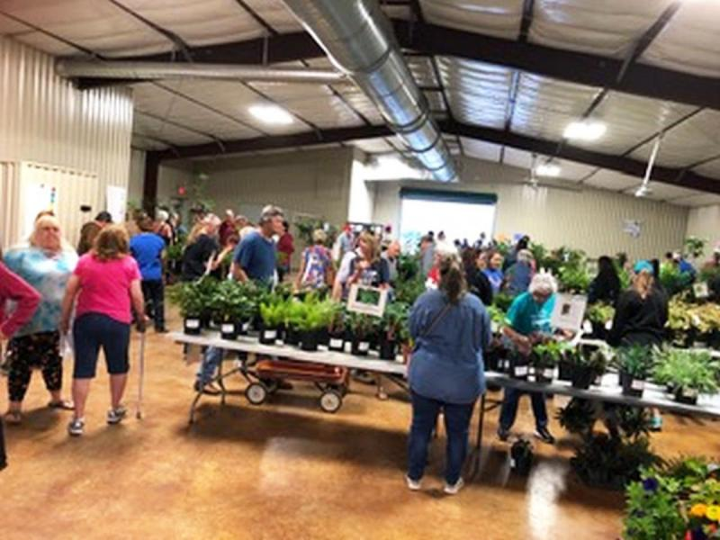 Master Gardeners conduct plant sales providing information