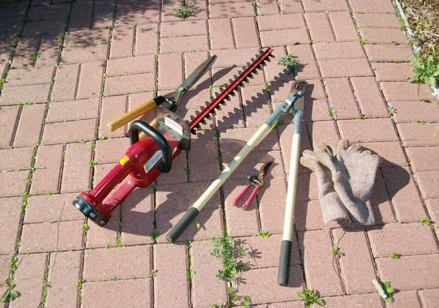 Useful tools for pruning roses