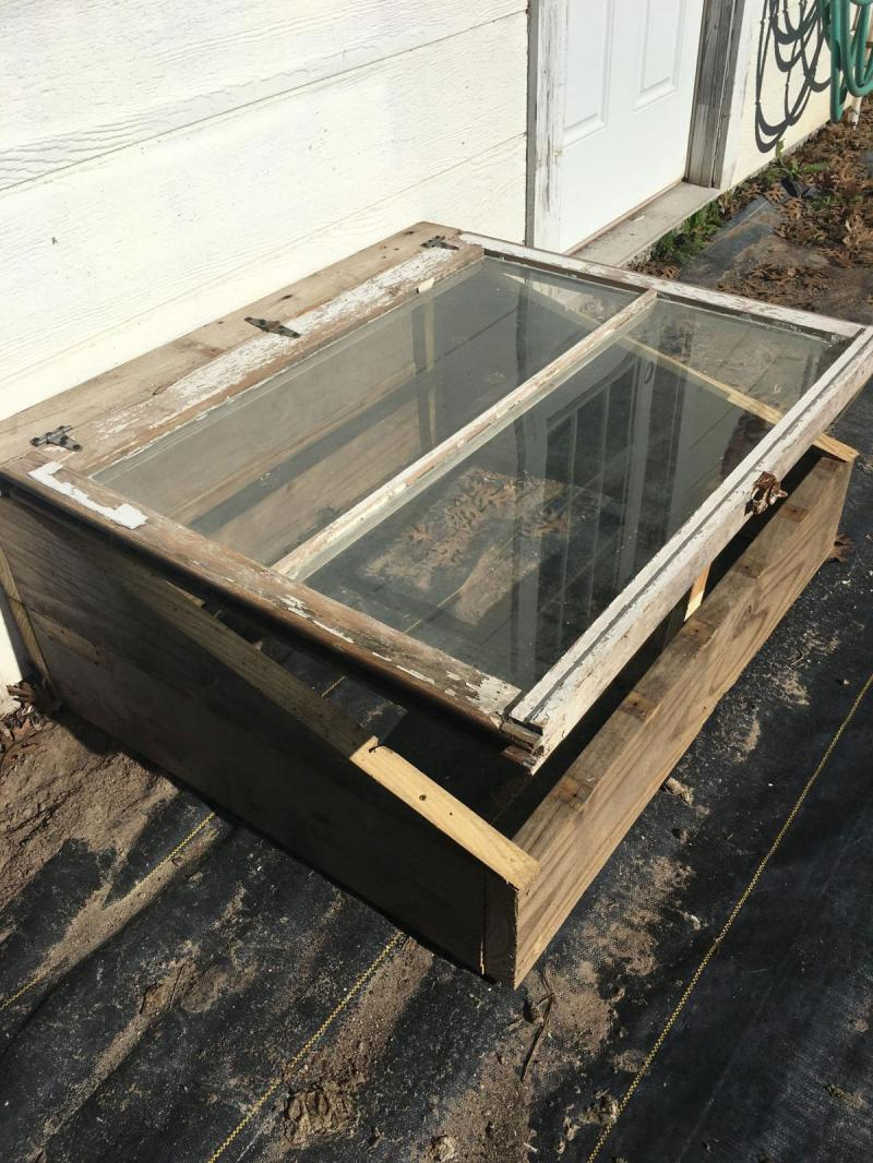 Cold Frame Old Window