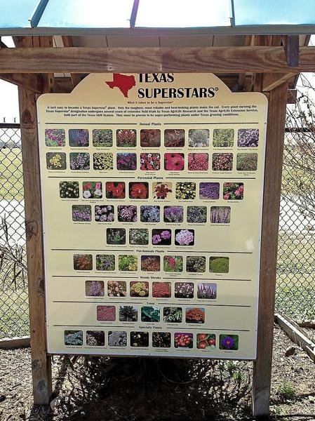 Texas Superstar Kiosk At Victoria Educational Gardens