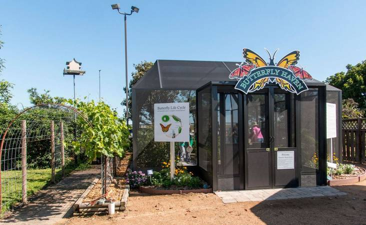 Butterfly Haven at VEG