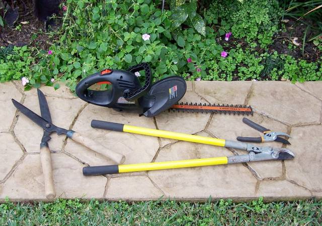 Different pruning tools