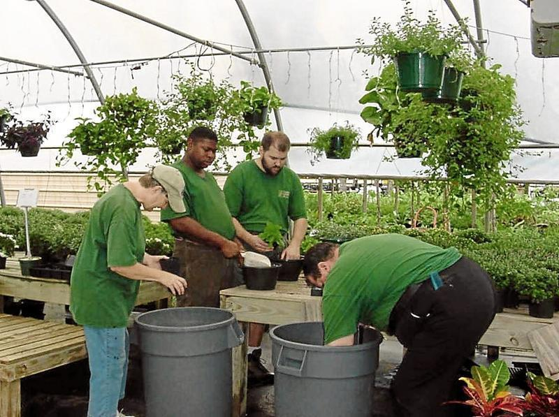 Adult clients at Devereux Growing Center