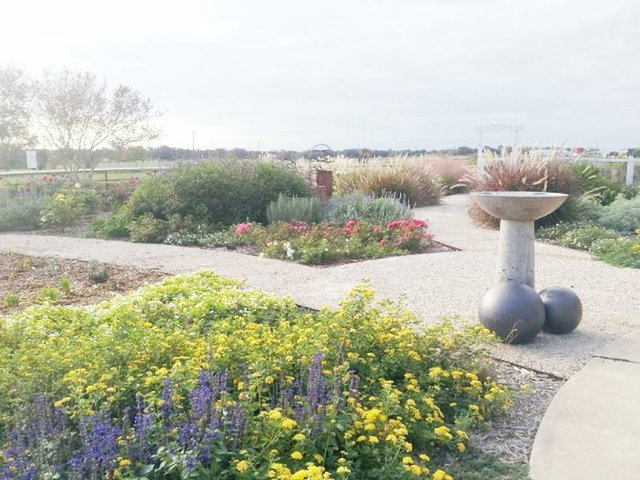 Flower garden with quality soil preparation for wow factor