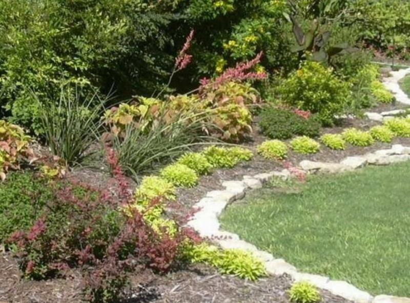 Mulching helps retain moisture for upcoming hot dry conditions