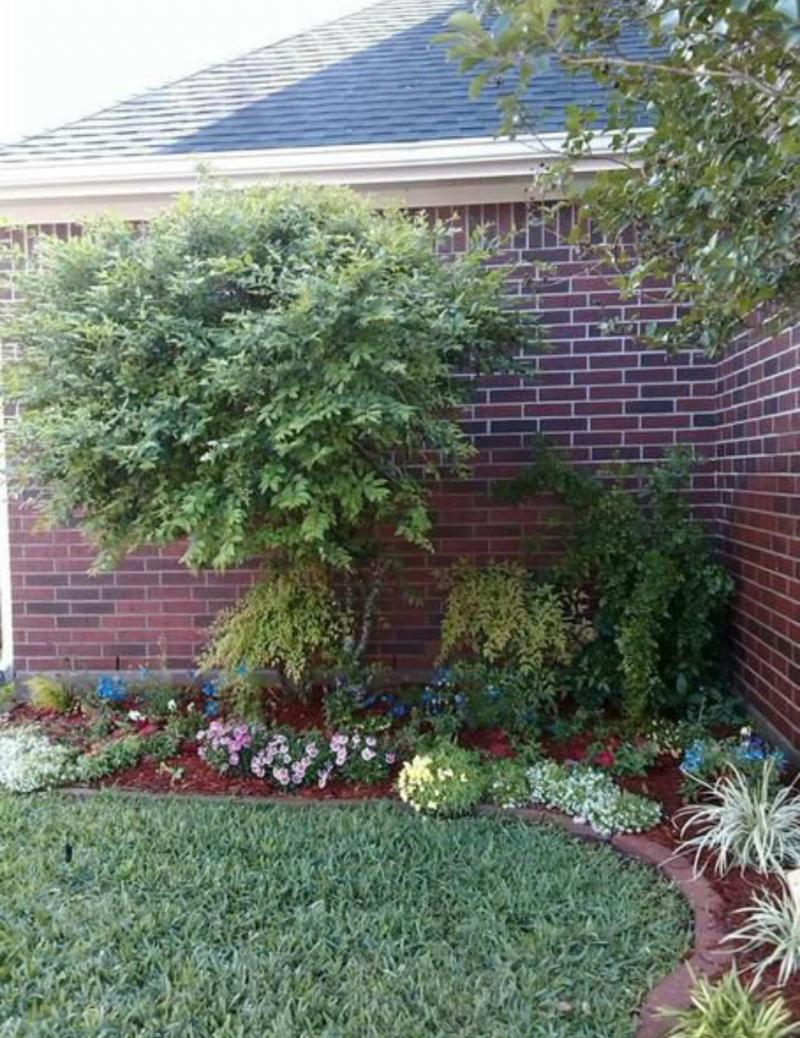 Cool weather plants will be replanted with transitional plantings